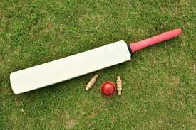 Local lads log victory in cricket match