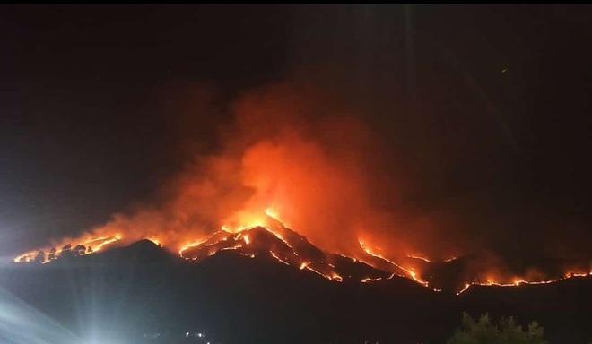 Massive fire engulfs grasslands in Kullu