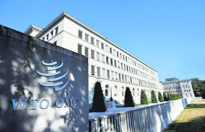 WTO backs govt move to cut farm subsidies