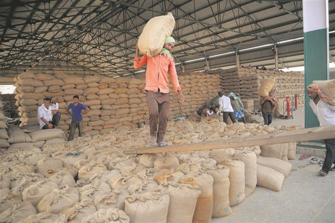 FCI to test age of milled rice stock