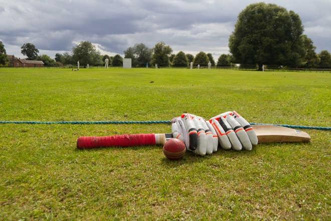 Cricket: Rose Zone log victory