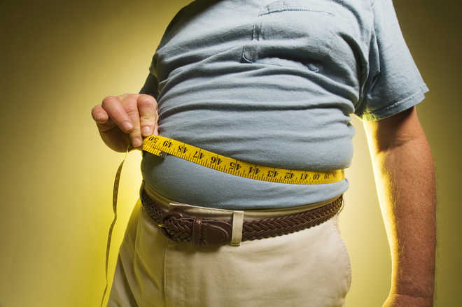 Scientists discover 14 genes that cause obesity