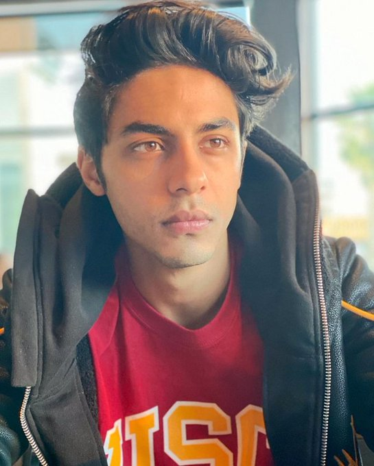 Probe reveals Aryan Khan's role in conspiracy, illegal procurement and consumption of drugs: NCB to court