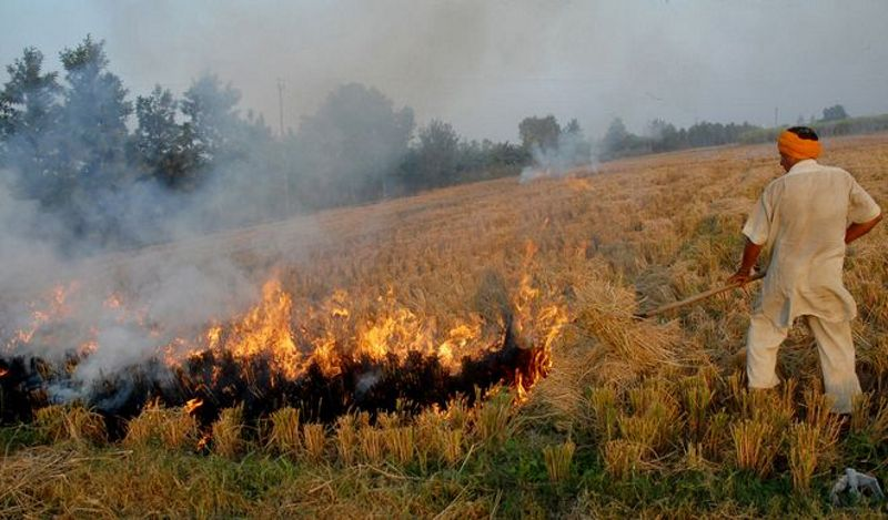 Farm fires are back