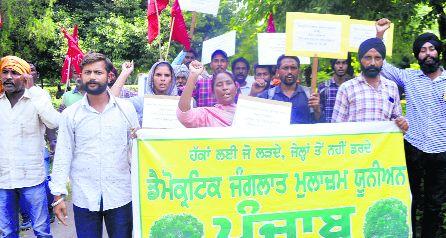 Contractual workers protest in Patiala, demand regularisation of jobs