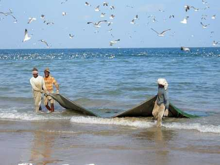 Sri Lanka Navy arrests 23 Indian fishermen, seize 5 trawlers for alleged poaching