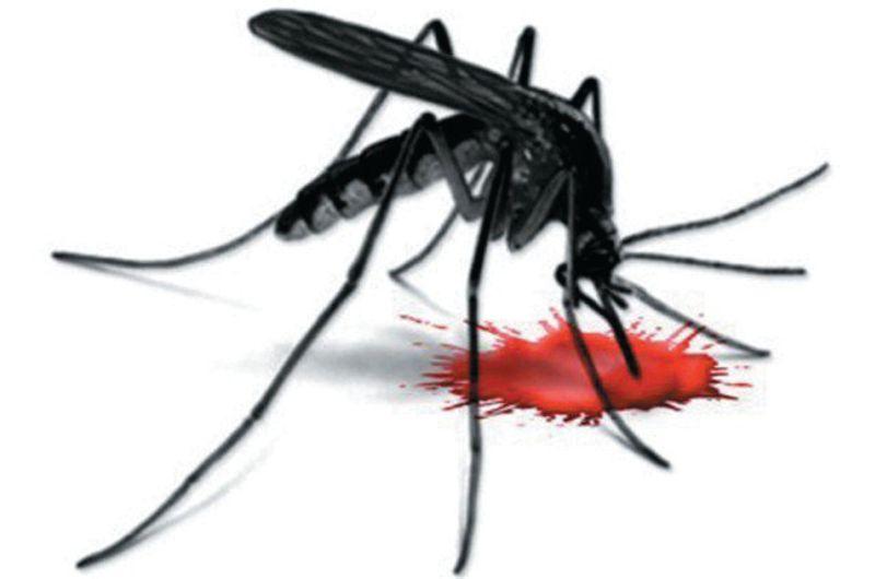 Dengue: Six Dera Bassi villages hit hard