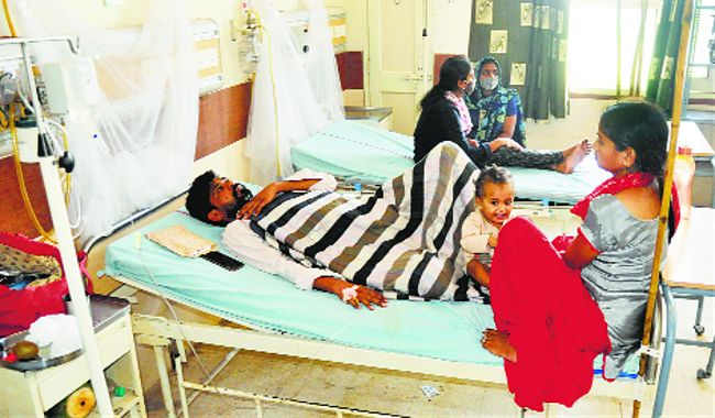 No let-up in dengue cases in Panchkula district