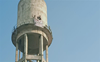 Unemployed teachers now move their protest to Jalandhar; climb atop water tank, demand jobs