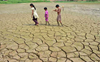 Heat waves, extreme droughts in 2020 had worst impact on health: Lancet