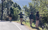 J-K encounter: 3 detained, search operation enters Day 7 in Poonch-Rajouri forest areas