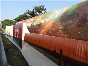 World's largest cricket bat unveiled in Hyderabad