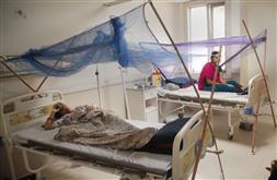 Delhi now close to winning battle against dengue: CM Kejriwal