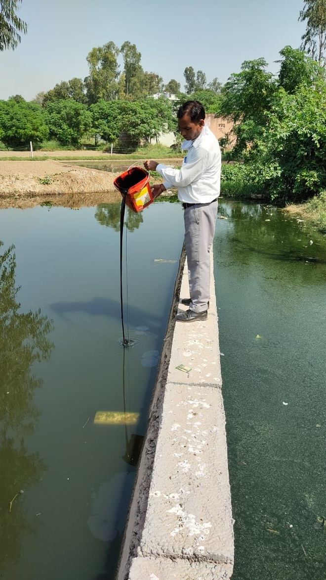 68 dengue cases in Ambala, likely to increase