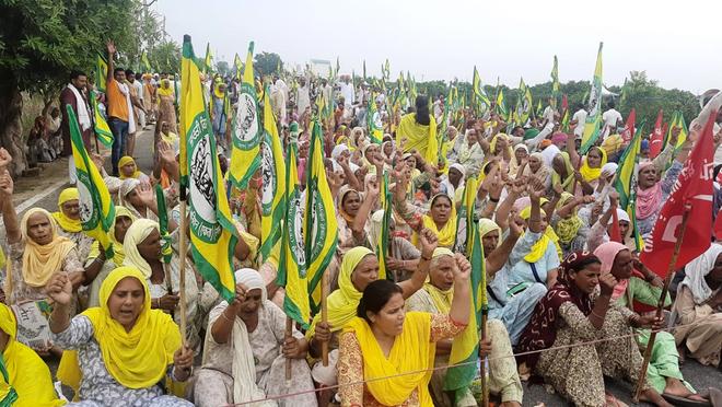 Bollworm: Farmers protest near Manpreet's house at Badal village