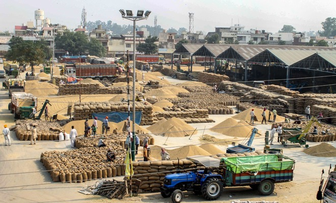 Rs162 cr released to paddy farmers