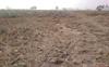 Shamlat land row: Ex-minister Balbir Singh Sidhu, MP Prem Singh Chandumajra in war of words
