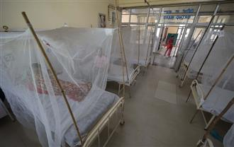 Spurt in dengue cases: Beds fall short in hospitals