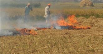 Stubble burning: No action in sight