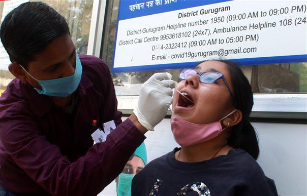 Haryana's weekly Covid cases jump by 28 pc, trigger fear of fresh wave