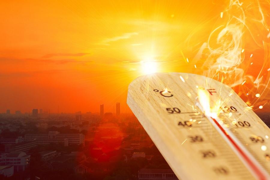 Warmest January in 62 years: IMD