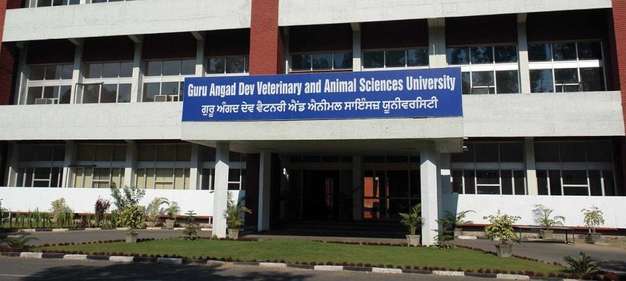 e-symposium on immunology at GADVASU