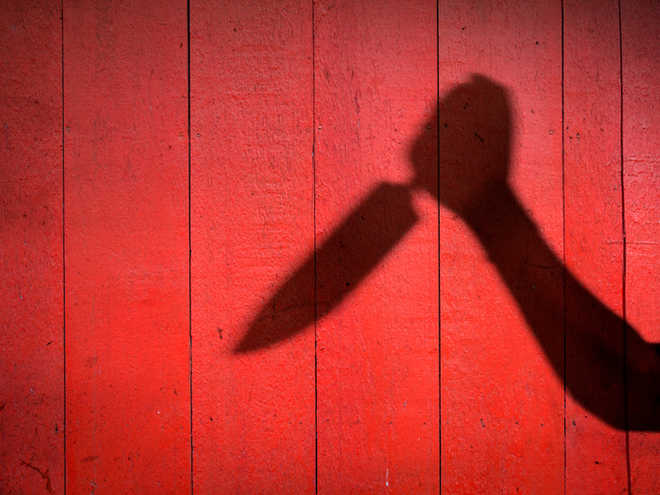 Delhi: Woman, son stabbed for objecting to noise