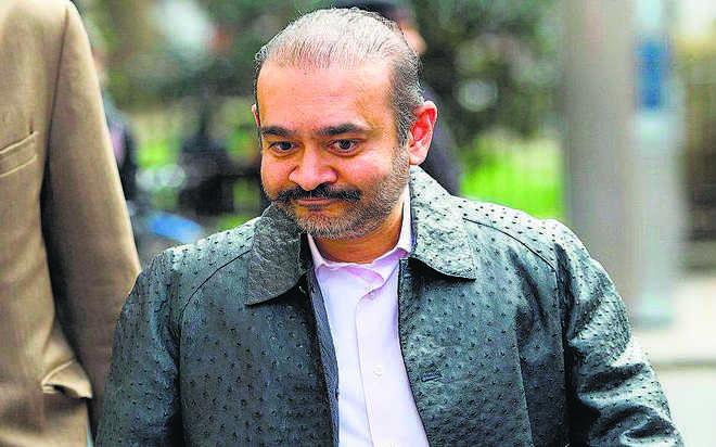 PNB scam case: UK judge orders Nirav Modi to be extradited to India