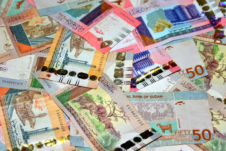 Sudan floats currency, part of measures to overhaul economy