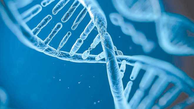 Researchers develop videos showing helix of 'dancing DNA'