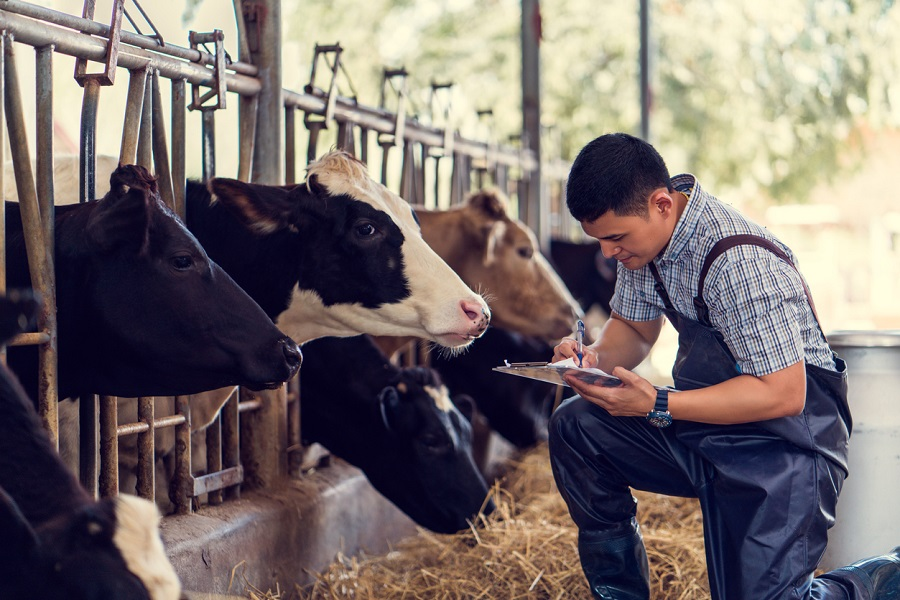 UGC asks varsities to encourage students to take voluntary online exam on 'cow science'