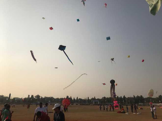 Bathinda celebrates Basant Panchmi with farmers' agitation songs