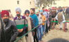 Civic Body Elections: 70.09% voter turnout in Patiala district