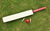 Siddarth Kaul, Barinder Sran lead Punjab to win