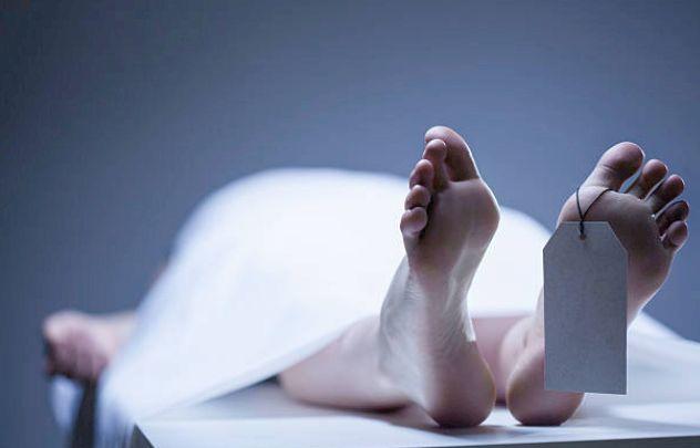 No salary, truck driver kills self