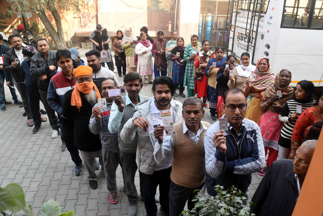 Punters bet on Congress victory in Bathinda