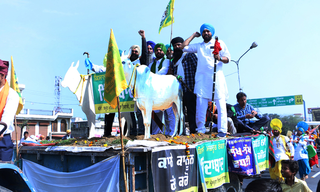 Farm labourers plan state-level rally in Bathinda on March 15