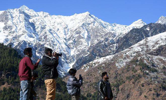 81% fall in tourist arrivals in 2020