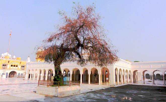 Recounting tragedy at Nankana Sahib