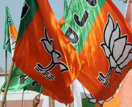 BJP councillor's election challenged