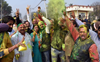 Saffron party fared poorly in its Malwa strongholds