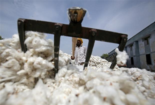 Pakistan to import sugar, cotton from India