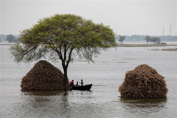 Extreme weather events claimed over 1.4 lakh lives in last 50 years: Meteorologists
