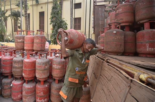 LPG price double in 7 years; tax collection on petrol, diesel jumps 459%: Pradhan