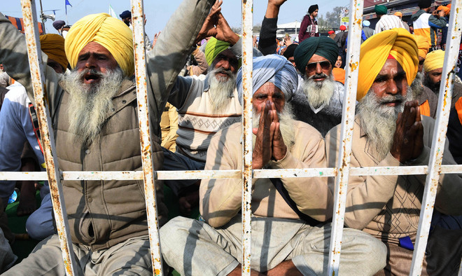 Sons died in farmers' protest, families struggle to reconcile with loss