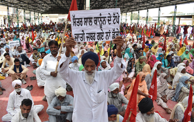 Farm labourers take to streets in Bathinda