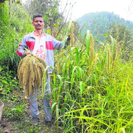 A stepping stone to Himachal's food sovereignty
