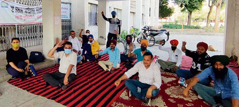 Punjabi varsity protest: Prof Gill made Dean, Academics