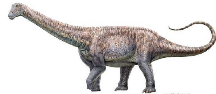 Scientists in Chile discover the remains of a plant-eating dinosaur in the middle of the world's driest desert: The Indian Tribune