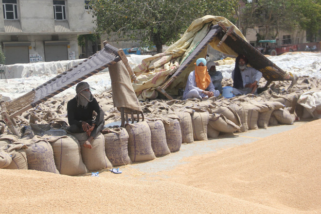 Farmer Union: Government insistence on bypassing arhtiyas suspicious